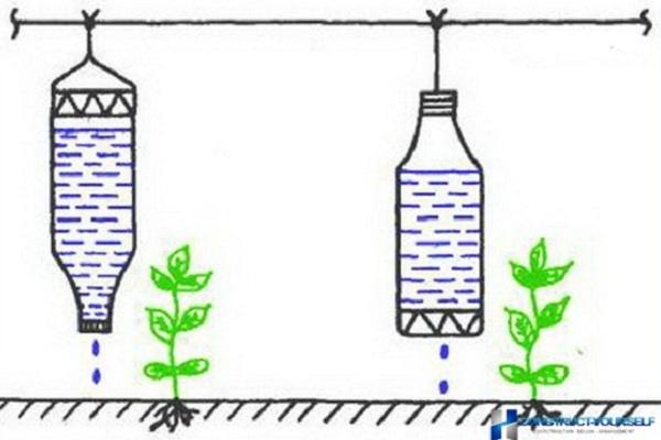 Капельный полив из пластиковых бутылок