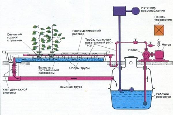 Схема полива гидропоника при посадке клубники горизонтально