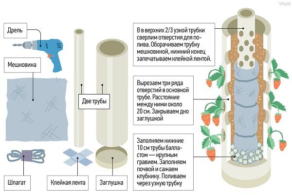 Схема для выращивания клубники в ПВХ трубе