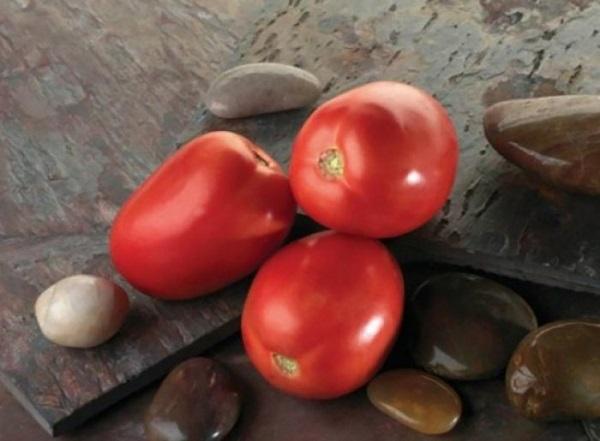 Сорт помидор Диаболик